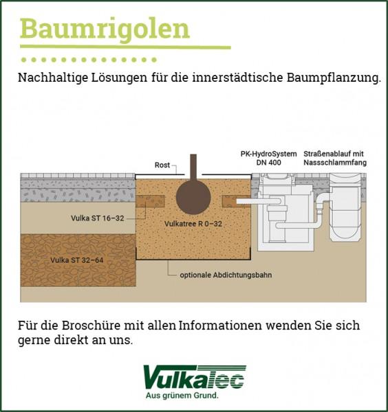 Baumrigolen_Grafik_NEU